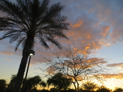 Day 780: Arizona Trip